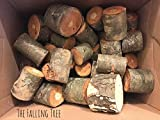 25 Real Log Tea light candle holders in Various Sizes, Perfect for Rustic Wedding centerpieces