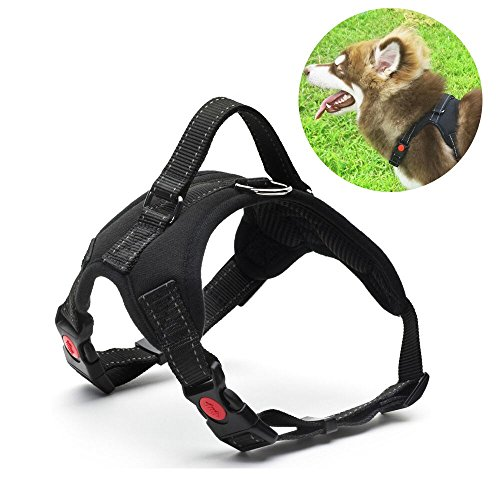 Great Dog Harness