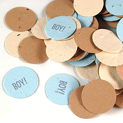 - Baby Boy Round Seed Confetti (Approx. 250 Pieces/Bag) (2 Bags)