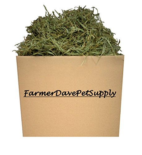15 Lb Second Cut Timothy Hay, Guinea Pig and Chinchilla Hay