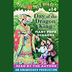 Magic Tree House, Book 14