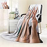 Dollar Blanket,Row of multiethnic College Students Raising Hands in Classroom Traveling, Hiking, Camping, Full Queen, TV, Cabin, Couch, Bed Throw(60''x 50'')