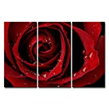 Canvas Print Wall Art Painting for Home Decor Front Red Rose Bright Fresh Color Rose Water Drops On The Petal Modern Giclee Stretched and Framed Artwork for Living Room