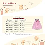Baby Girl Wedding Dresses Pink Embroidery Lace Tutu Dress with Flower and Leaves Tulle Party Dress for Infant Girl 4-5T
