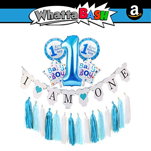 I Am One 1st Birthday Banner Balloons Set - Blue Baby Boy 1st Birthday Theme Party Decorations Tassels Kit Supplies Essentials Accessories Favors for Newborn Girl Boy Backdrop Items Photo -