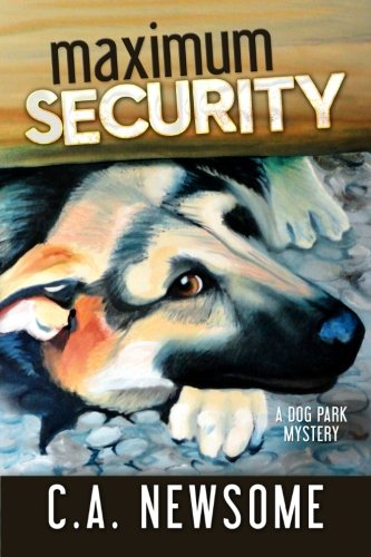 Maximum Security Mystery Anderson Mysteries product image
