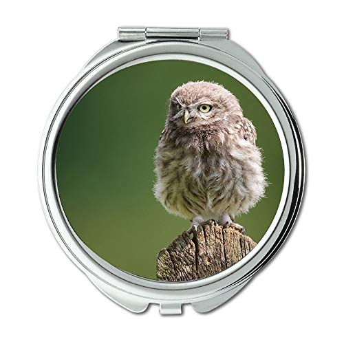 Yanteng Mirror,Travel Mirror,owl for Sale Tree Stump owl Bird,Pocket Mirror,Portable Mirror -