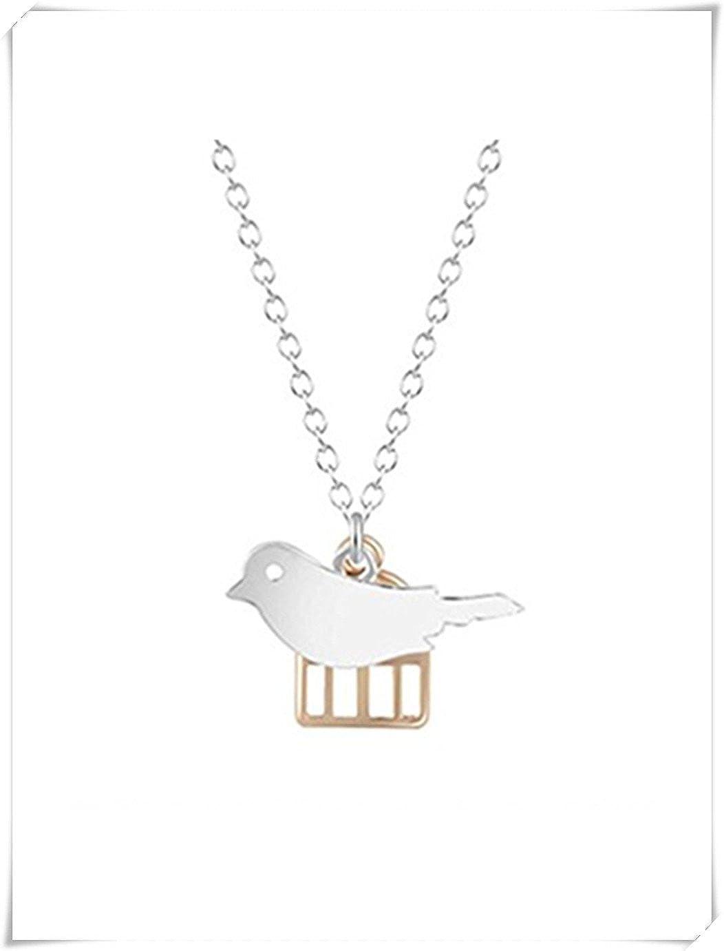 Animal pájaro colgante creativo combinación collar de jaula de pájaros Meteor Shower CE45