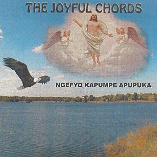 Pilgrims For Jesus By The Joyful Chords On Amazon Music Amazon