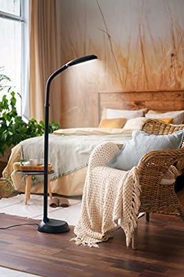 Kenley Lámpara de Pie LED 12W Regulable - Luz del Dia Natural para ...