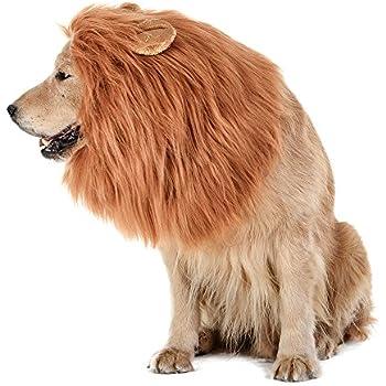 605ba6bf8 TOMSENN Dog Lion Mane - Realistic & Funny Lion Mane for Dogs -  Complementary Lion Mane for Dog Costumes - Lion Wig for Medium to Large  Sized Dogs Lion Mane ...