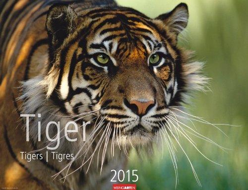 Tiger 2015