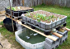 How to Build a Home Grown Aquaponics System Cheap