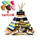 Luxury Pet Teepee Pet supplies Dog toy tent canvas style pet house puppy and cat tent (with cushions or padless tents)