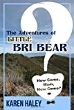 The Adventures of Little Bri Bear, Karen Haley, 1434911438