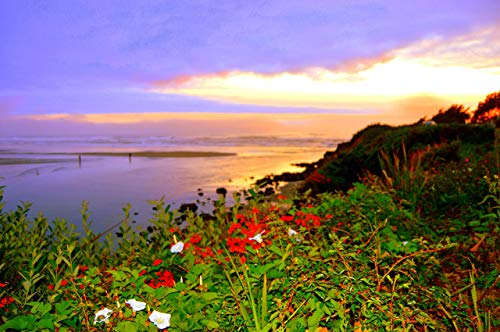 Sunset over Yachats Bay Fine Art Photo Print, used for sale  Delivered anywhere in USA