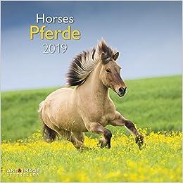 Pferde 2019 Broschürenkalender por None epub