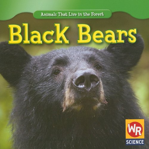 Black Bears (Animals That Live in the Forest): Macken, Joann Early ...