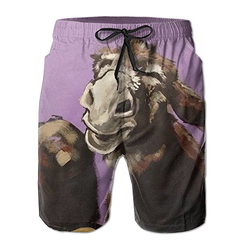 Tydo Donkey Painting Men's Beach Shorts Quick Dry Swim Trunks Surf Board Pants With Pockets For Men M (Best Fencing For Donkeys)