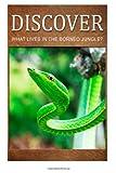 What Lives in the Borneo Jungle? - Discover, Discover Press, 1499366477