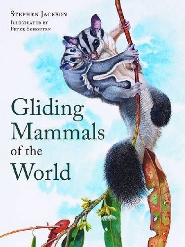 Soaring Squirrel - Gliding Mammals of the World