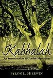 Kabbalah, Byron L. Sherwin, 0742543641