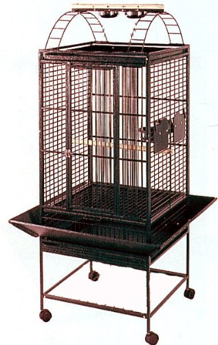 New Parrot Bird Wrought Iron Cage 18x18x53 Play-Top 4 Colors Available *Black Vein or Silver Vein or Egg Shell Vein or Green Vein*, My Pet Supplies