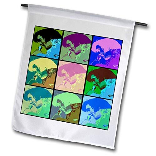 3dRose Lens Art by Florene - Elvis - Image of Collage of Nine Faces of Elvis in Cartoon Colors - 12 x 18 inch Garden Flag (fl_304487_1)