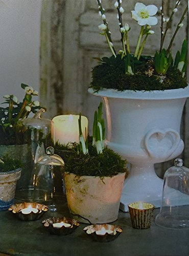 Leuchtbild LED Bild beleuchtet Kerze Laterne Wandbild Kerzen Leinwand 40 x 30 cm
