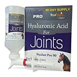 Hyalun PRO 90, Equine Joint Health & Cartilage Support, 9 ounce