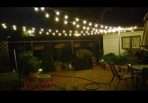Brightown 25 Clear Globe G40 String Lights Set, 25FT Green Wire      Amazon.com
