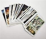 fun109 Tarot Cards Beginner Deck Vintage 78Pcs/Set