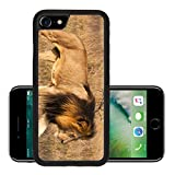 Liili Premium Apple iPhone 7 Aluminum Backplate Bumper Snap Case iPhone7 A male lion with a full dark mane is moving through the grass The lion panthera leo is a member of the family Felidae They typi