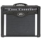 Peavey Envoy 110 TransTube Amplifier