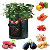 JapanAmStore 6-Pack Garden Potato Grow Bag Vegetables Planter Bags with Handles and Access Flap for Potato, Carrot & Onion (5 Gallon)