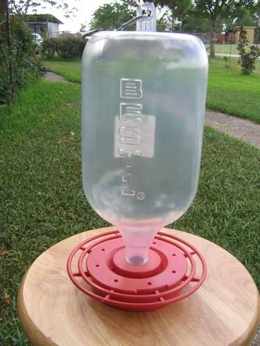 72 Ounce Hummingbird Feeder - 1