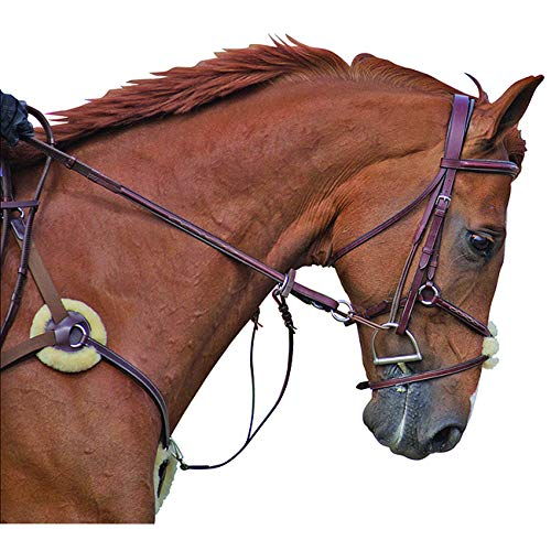 Toulouse 5 Point Breastplate with Running Martingale Attachment