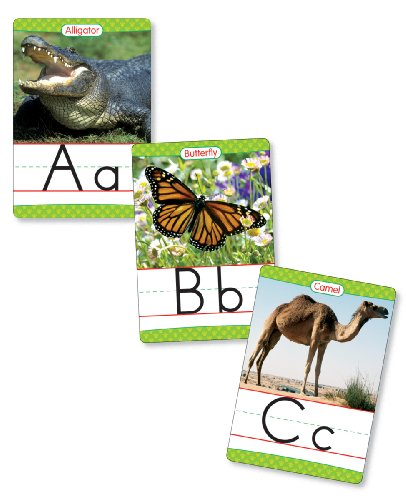 Animals Wall Cards - Animals from A to Z Manuscript Alphabet Set: 26 Ready-to-Display Letter Cards with Fabulous Photos of Animals