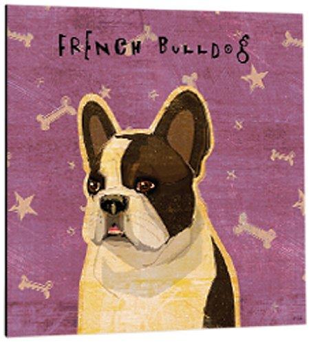 Tree-Free Greetings 61022 Premium Square Eco Magnet, 3.5-Inch, White Brindle French Bulldog