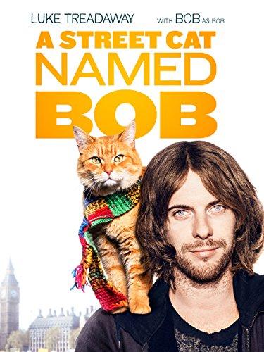 S Street Cat Named Bob Imdb