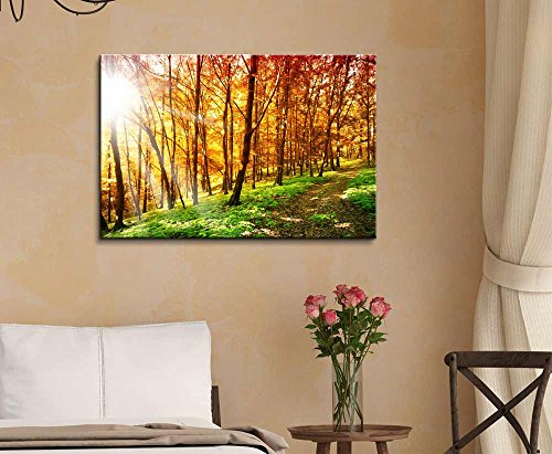 Beautiful Scenery of Sun Ray in The Forest in Autumn Wall Decor