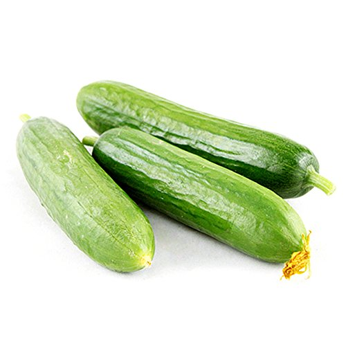Mini Succulent Cucumber Seeds mini vegetable seeds organic NO-GMO seeds Easy Cultivation for garden balcony Courtyard, 20PCS (Mini Seed)