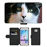 Just Phone Cases Flip PU Leather Wallet Case with Credit Card Slots // M00128317 Cat Kitty Feline Animal Photo // Samsung Galaxy S6 (Not Fits S6 EDGE)