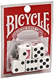 united states plastic puzzle - Bicycle 5 count dice