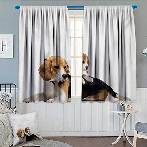 Beagle Window Curtain Drape Cute Family with Mother and Baby Puppy Domestic Fur Animal Photography Decorative Curtains for Living Room 55 W x 39 L Pale Caramel White Black
