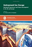 img - for Underground Gas Storage: Worldwide Experiences and Future Development in the UK and Europe - Special Publication no 313 (Geological Society Special Publication) book / textbook / text book
