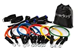 HemingWeigh Resistance Band Set with Door Anchor, Ankle Strap, Exercise Chart, and Resistance Bands Carrying Case For Sale