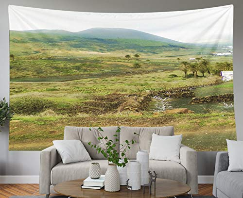 Shorping Father Gift Tapestry, 60x50Inches Home Wall Hanging Tapestries Art for Décor Living Room Dorm of Haria and its Surrounding Nature is City in North Lanzarote Island Named as City