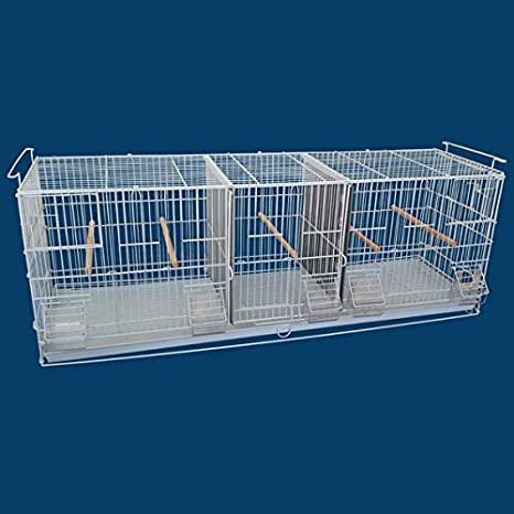 Bellas Bungalow Breeding Bird Cage - Several Options Available! BirdCages4Less