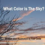 img - for What Color is the Sky? (Literacy Links to Phonology) (Volume 5) book / textbook / text book